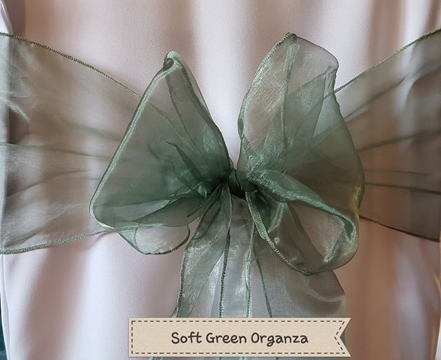 SOFT GREEN ORGANZA