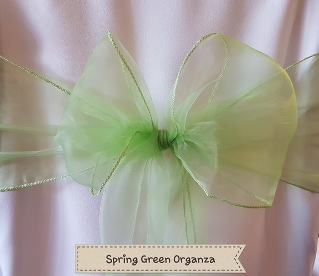 SPRING GREEN ORGANZA