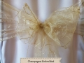 CHAMPAGNE EMBROIDED