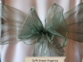SOFT GREEN ORGANZA