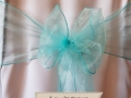 TURQUOISE ORGANZA