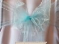 PALE BLUE ORGANZA